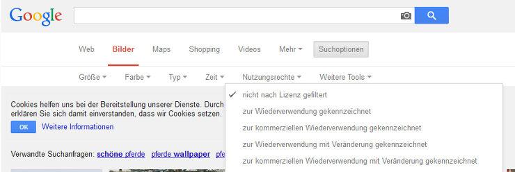 google bildersuche filter f r nutzungsrechte hinzugef gt seo s dwest. Black Bedroom Furniture Sets. Home Design Ideas