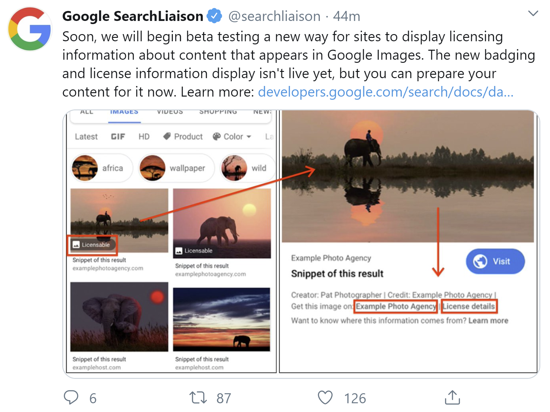 Google: soon license information in image search